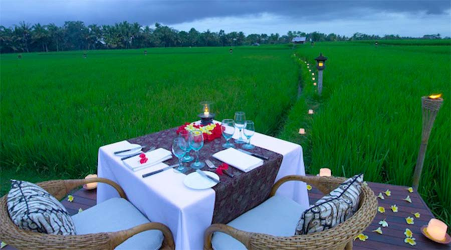 DINING ON THE RICE FIELD BLOG GALLERY